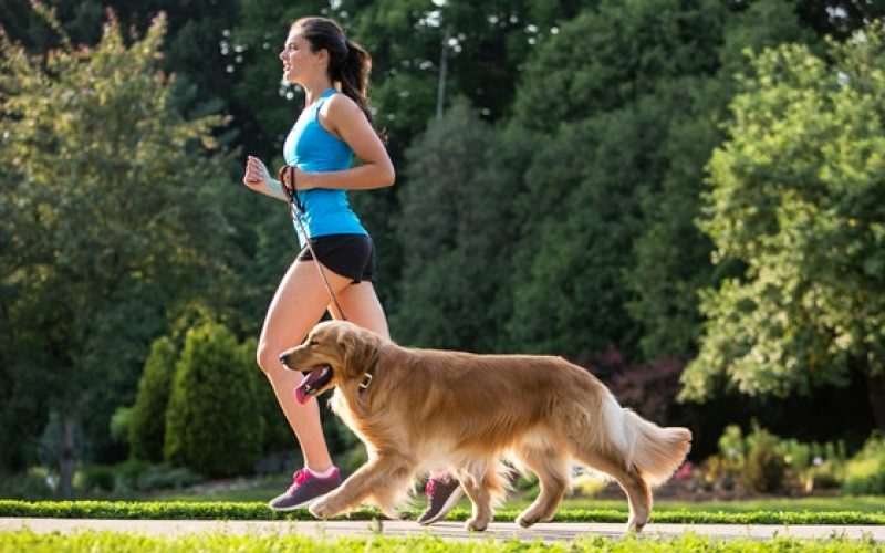 3 tips to go from being a couch potato to more active