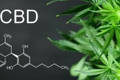 Do you know what CBD oil is?