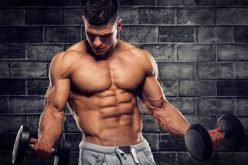 Foods to Eat more of when trying to Gain Muscle