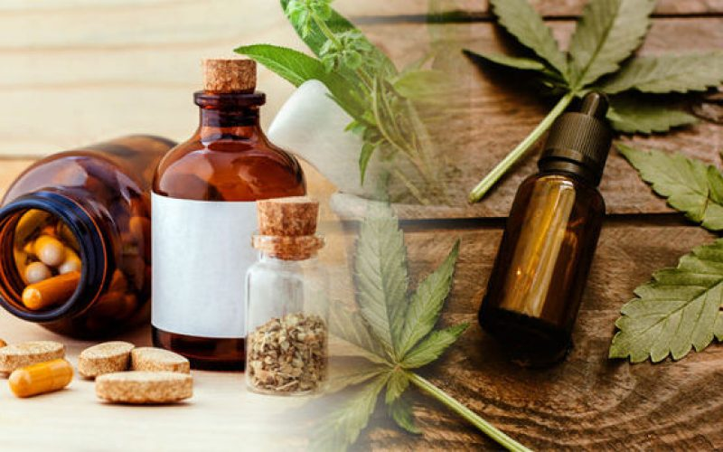 Determining The Best: CBD Oil Vs CBD Capsules